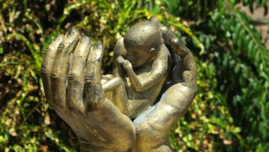 Πονάει το έμβρυο όταν του κάνουν έκτρωση;