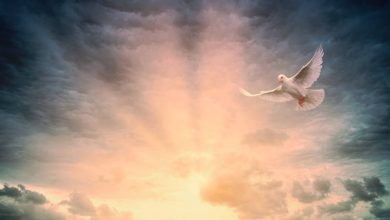 Photo of Για να κατοικήσει μέσα μας ο Χριστός: «Κύριε Ιησού, Χριστέ ελέησόν με»…
