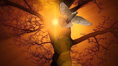 Γιατί η βλασφημία κατά του Αγίου Πνεύματος δεν συγχωρείται;
