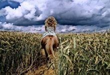 Γέροντας Ιωσήφ Βατοπαιδινός - Τι είναι οι ηδονές;